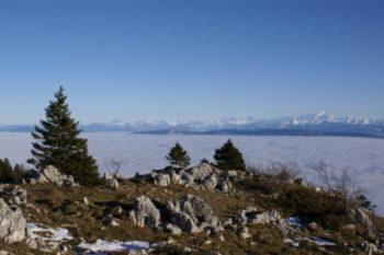 Randonnée au Jura
